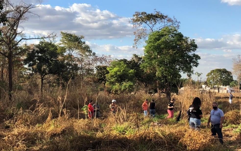 Bombeiros encontram corpo em área de mata, em Goiânia — Foto: Marina Demori/TV Anhanguera