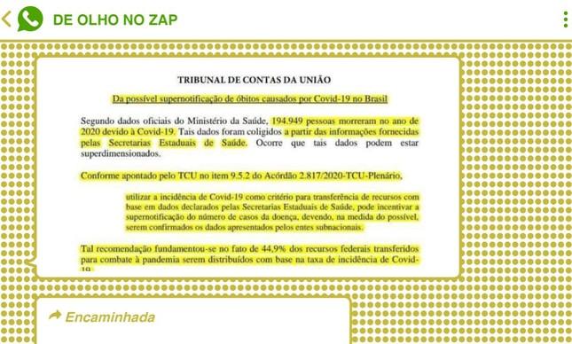 Página de relatório falso do TCU foi espalhada como 'evidência' da existência de documento da corte contábil em chats pró-governo
