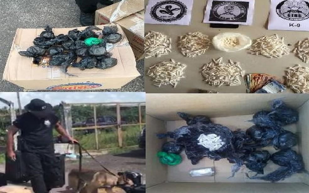 Material apreendido pela polícia (Foto: Polícia Civil)