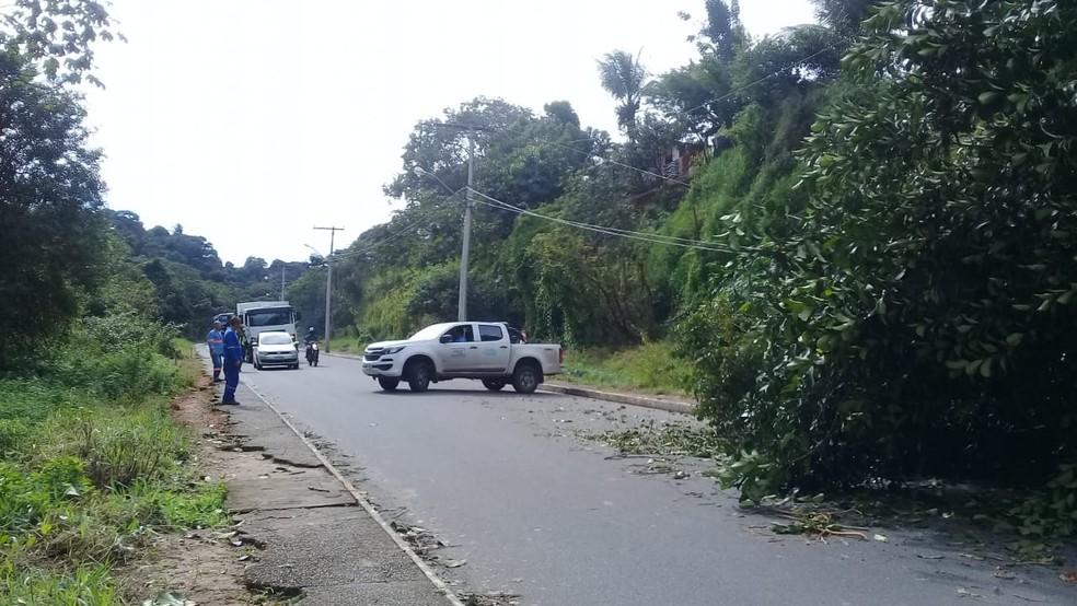 Não há informações sobre feridos.  — Foto: Cid Vaz / TV Bahia