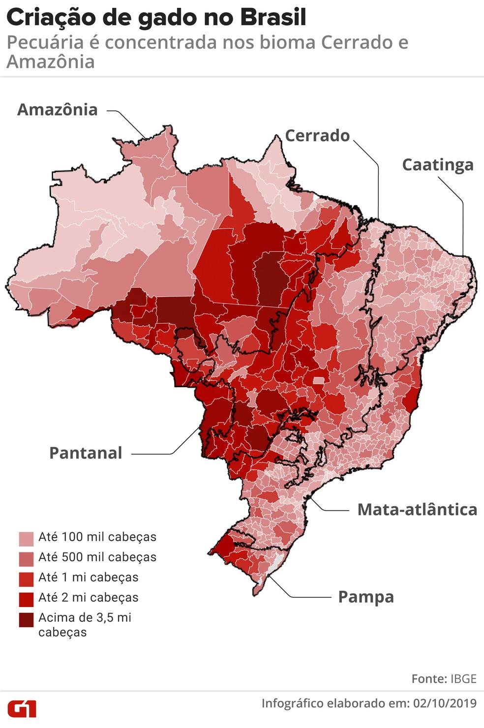 Criação de gado no Brasil se concentra na Amazônia e no cerrado — Foto: Rodrigo Sanches/G1