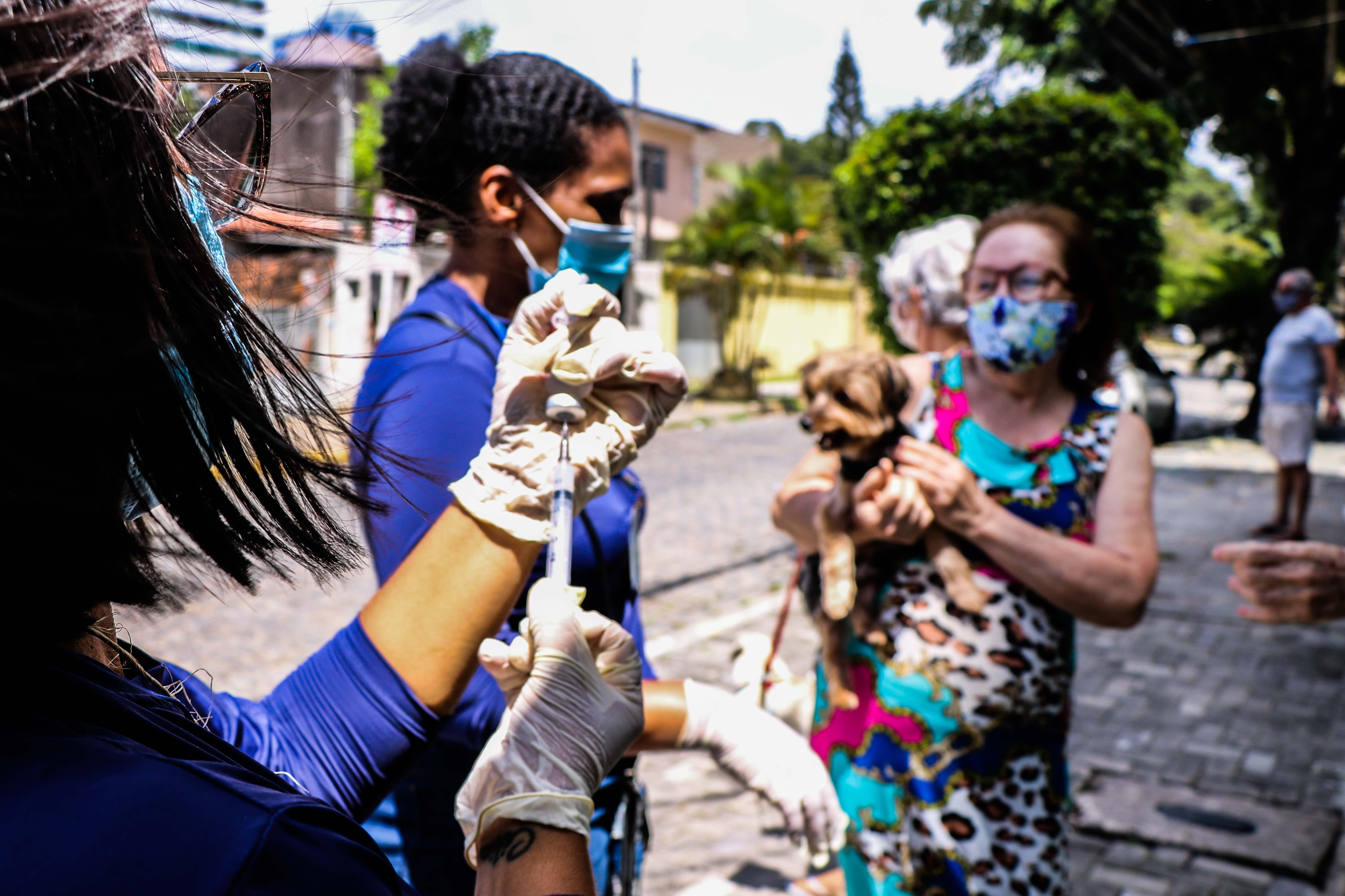Campanha de vacinação contra raiva de cães e gatos chega a bairros da Zona Sul do Recife