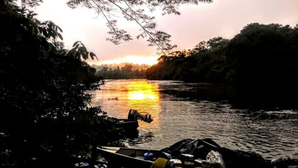 A árvore mais alta da Amazônia foi localizada a 10 km floresta adento, a partir da margem do rio Jari — Foto: Divulgação/Jhonathan dos Santos