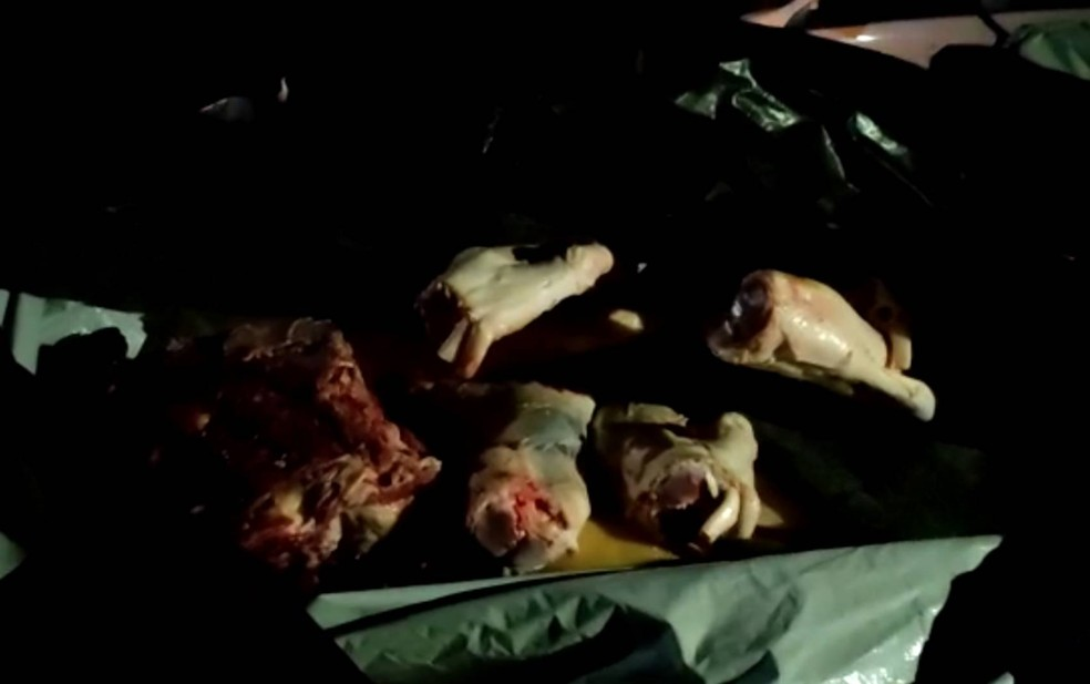 Uma tonelada de carne de abate clandestino é apreendida após denúncia em Itamaraju, no sul da Bahia — Foto: Henrique Peixoto