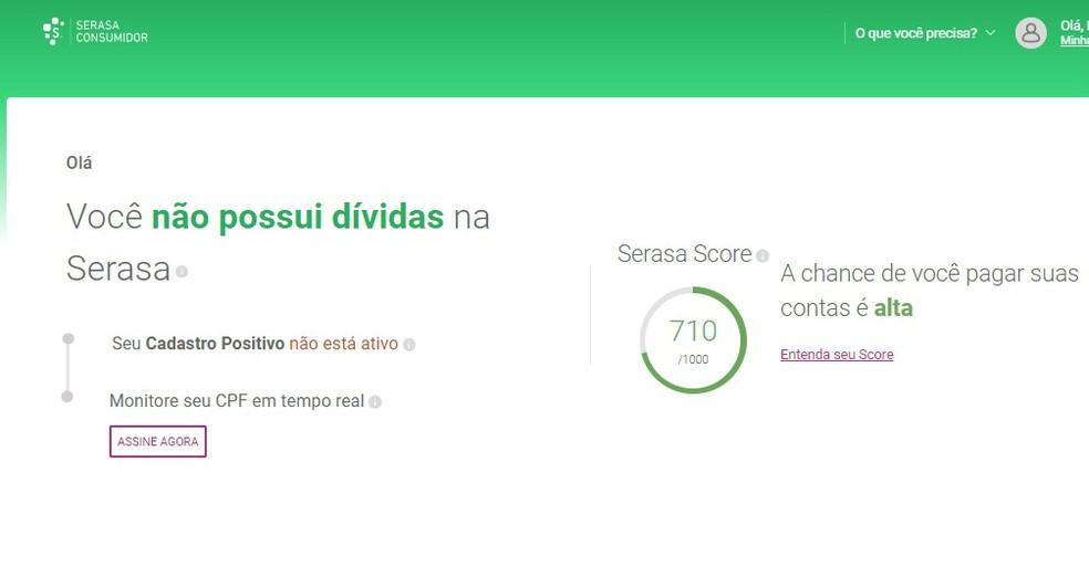Site do Serasa Consumidor mostra se CPF está regular ou negativado — Foto: Reprodução/Rodrigo Fernandes