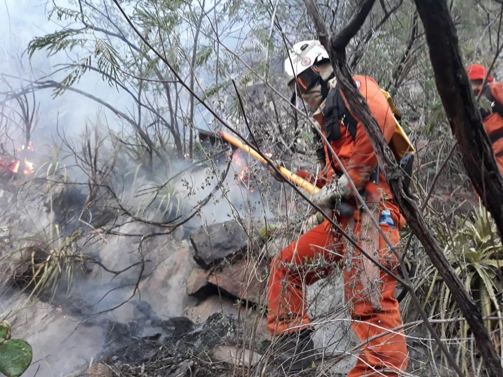 Incêndio de grandes proporções atinge área de vegetação na Chapada Diamantina, na Bahia  — Foto: Corpo de Bombeiros Militar da Bahia