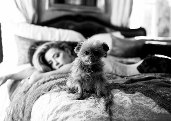 Amber Heard (Foto: Instagram)
