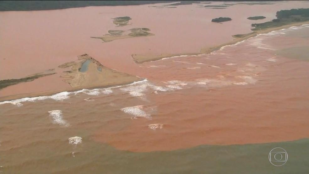 Em 2016, lama da Samarco já mudava a vida marinha na foz do Rio Doce — Foto: Rede Globo