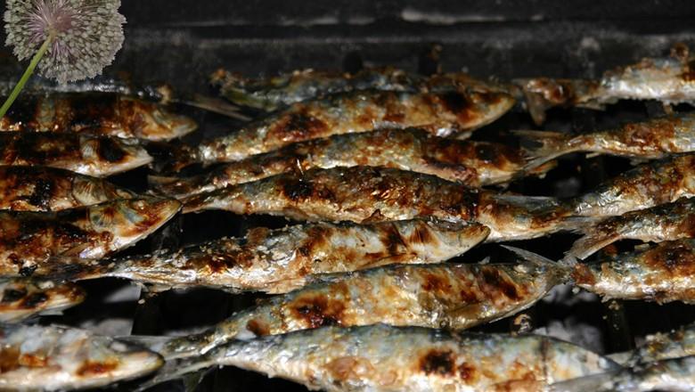 peixe-sardinha-na-brasa (Foto: Fernando DC Ribeiro/CCommons)