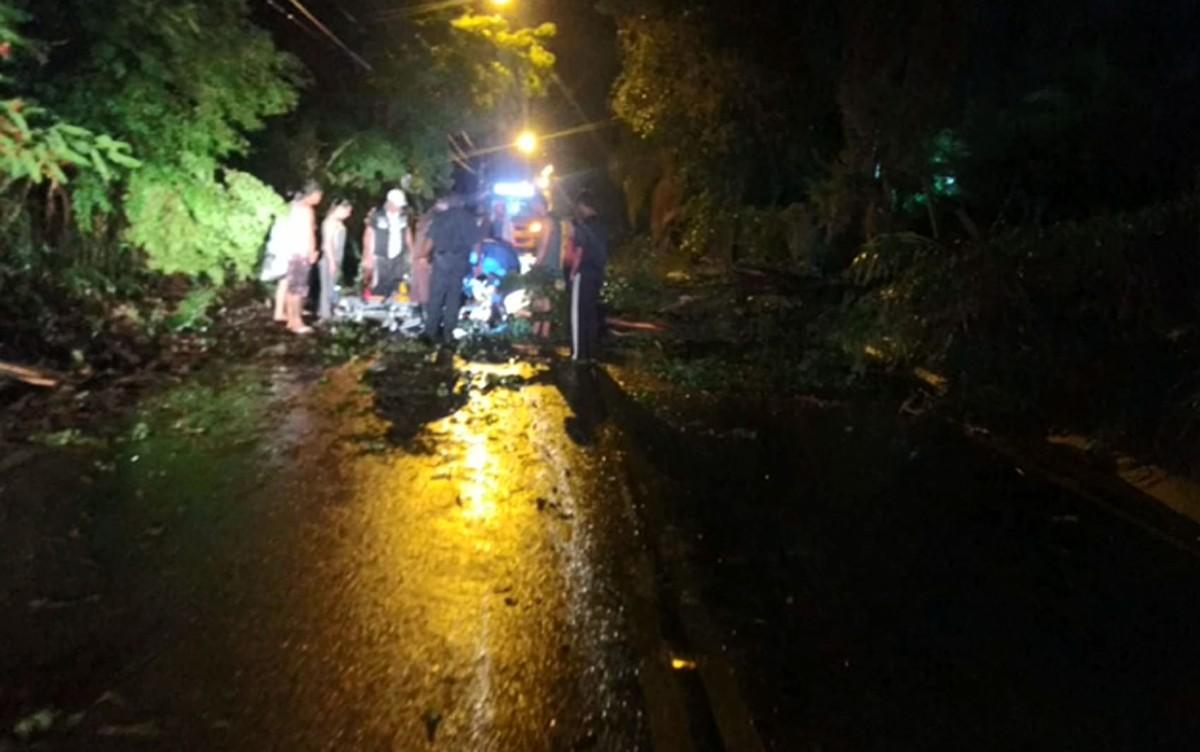 Árvore atinge motocicleta em Valinhos e deixa um ferido durante temporal - G1