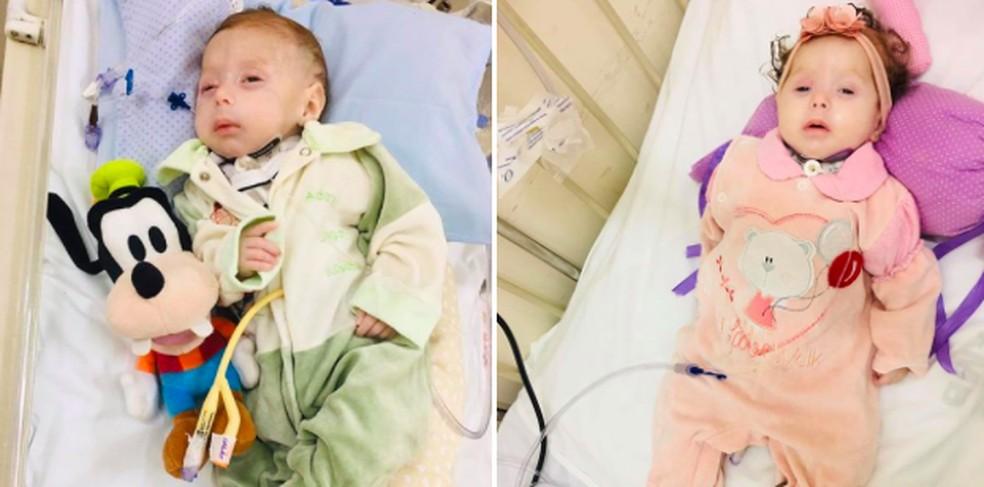 Ação arrecadou insumos para gêmeos com 'erro' no metabolismo manterem tratamento em casa — Foto: Arquivo pessoal/Talita Cavalari