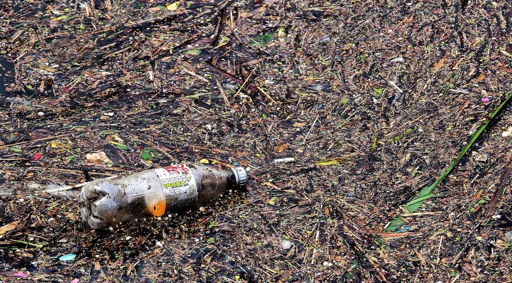Plásticos ficam por centenas de anos no ambiente sem desintegrar (Foto: Andrew Martin/Pixabay)