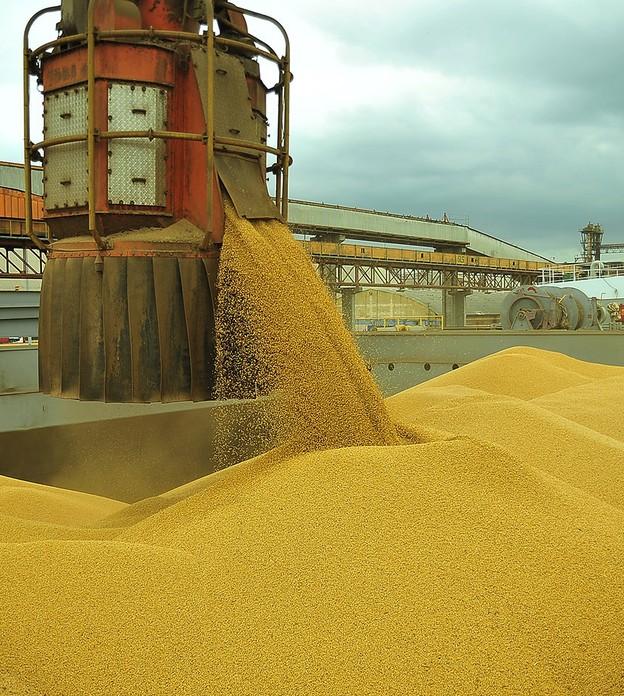 Anec eleva previsão de exportação de soja do Brasil, mas ainda vê queda em junho