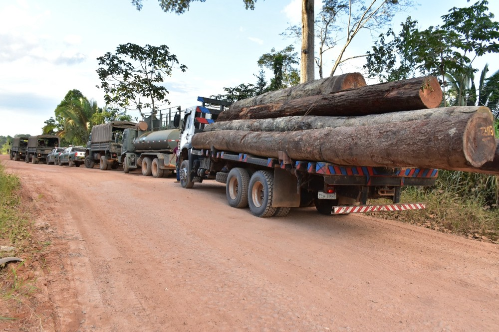 230m3 of illegal logs seized in Uruará