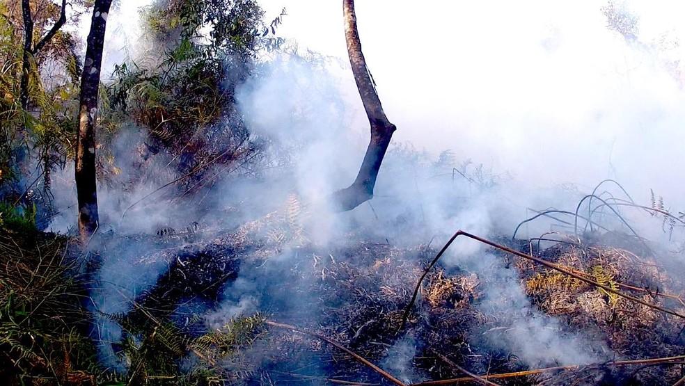 Bananal decreta emergência após seis dias de incêndio na Bocaina (Foto: Divulgação/Amovale)