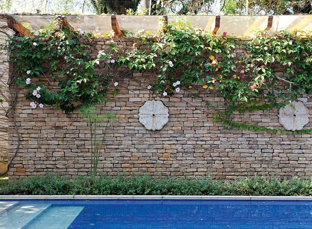 Neste projeto do arquiteto e paisagista Leo Laniado, do A Estufa, o muro rente à piscina foi coberto por ipomeias (Foto: Lilian Knobel/Editora Globo)