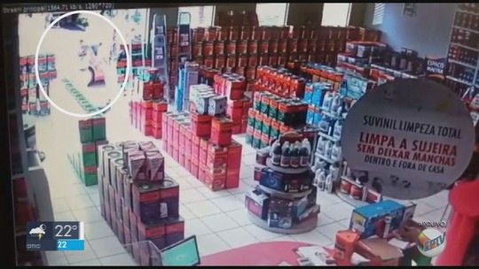 Polícia Civil prende homem suspeito de matar funcionário em loja de tintas em Campestre, MG