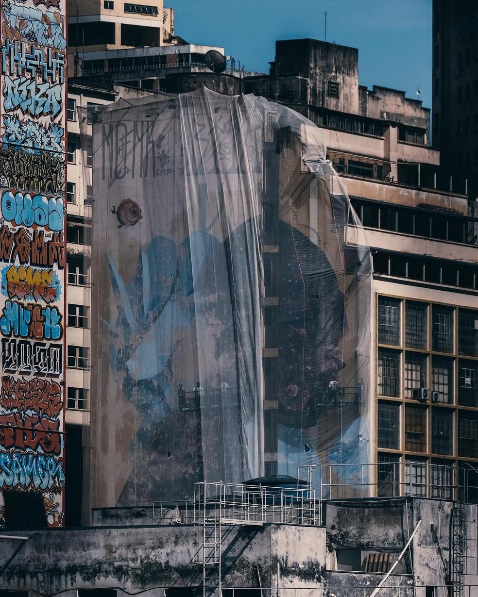 Nova pintura que começa a ser feita nesta segunda-feira (16) pelo artista Davi Melo Santos não será igual à arte original — Foto: Fernando Biagioni/Divulgação