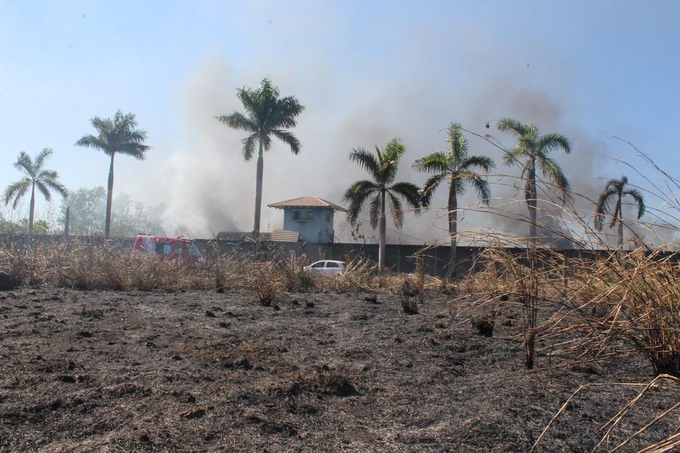Terreno em frente ao pátio também foi incendiado (Foto: Pedro Bentes/ G1)