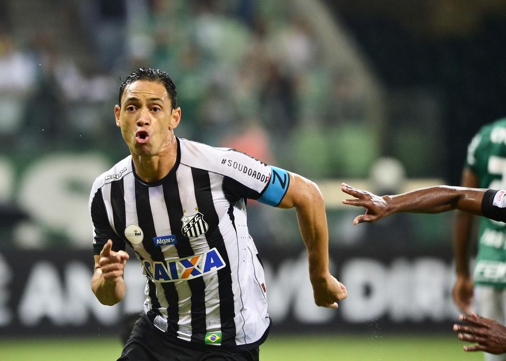 Ricardo Oliveira marcou 12 gols em 40 jogos pelo Santos em 2017 (Foto: Marcos Ribolli)