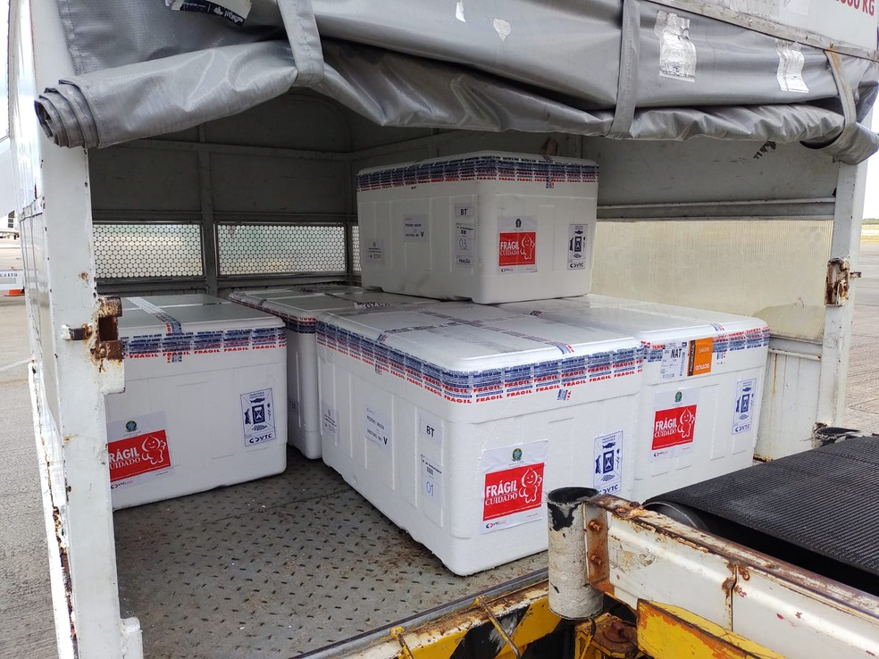 RN recebe 48 mil doses de vacinas e aguarda mais 94 mil  — Foto: Paulo Nascimento/Divulgação