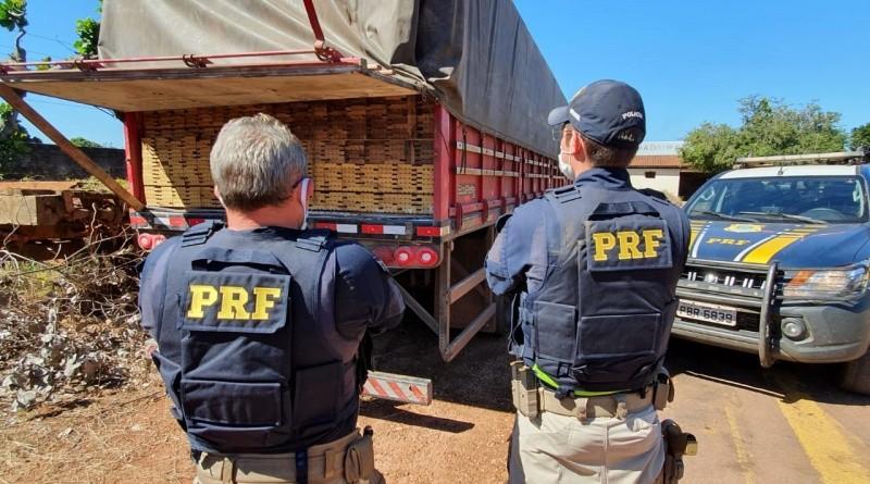 Caminhão com 38 metros cúbicos de madeira ilegal é apreendido em Sinop (MT)