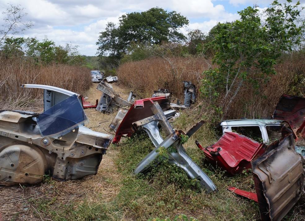 Peças foram encontradas em Caruaru (Foto: Adielson Galvão/Arquivo pessoal)
