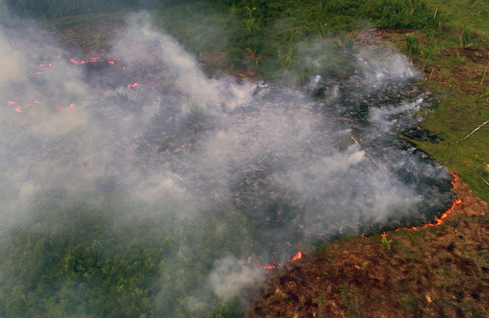 Incêndio é visto na Floresta Amazônica no distrito de Janaucá, em Careiro Castanho, a 113 km de Manaus, no dia 4 de agosto. — Foto: Chico Batata/AFP
