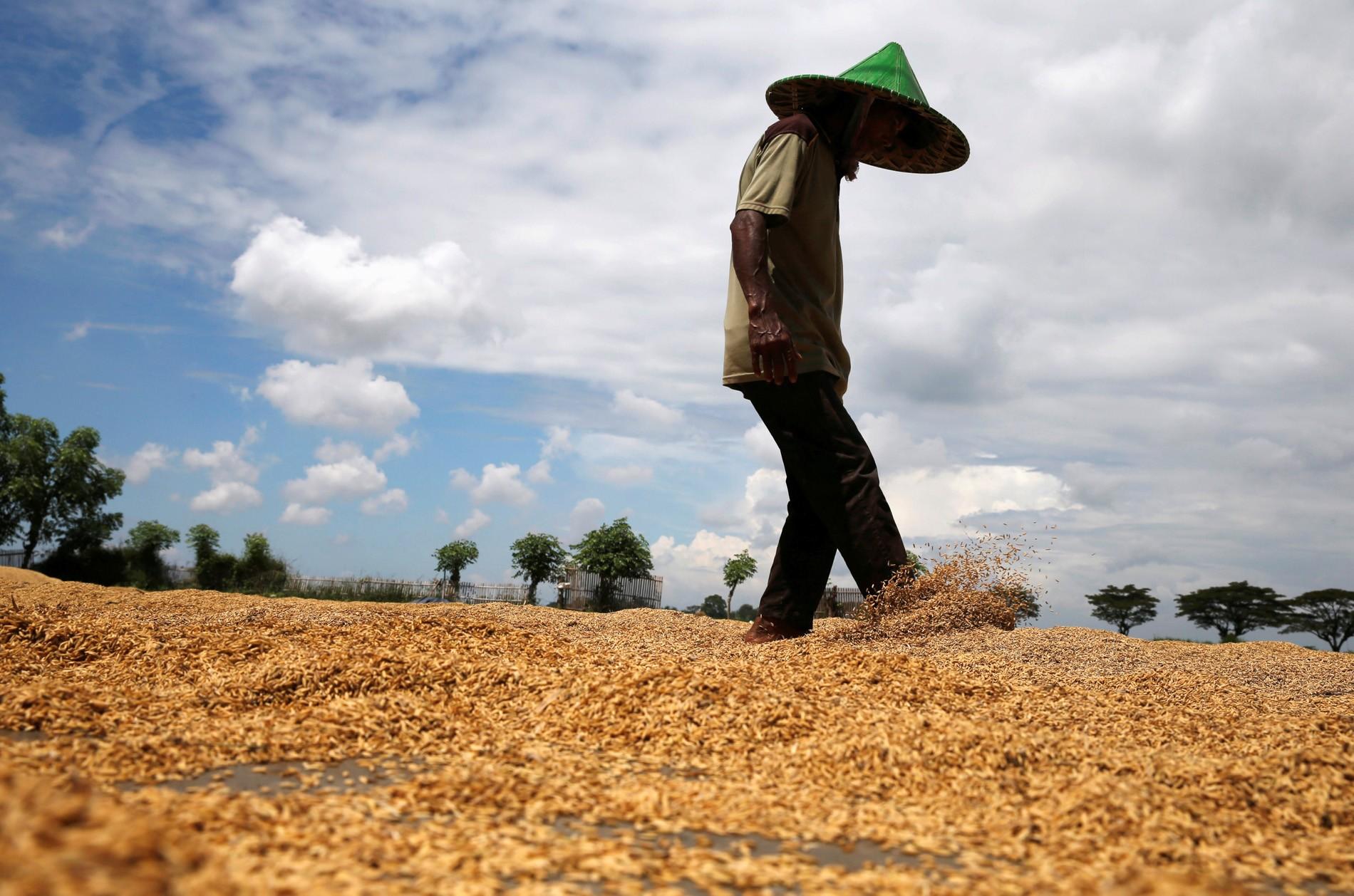 Oxfam mostra que quem produz comida está no mapa da fome