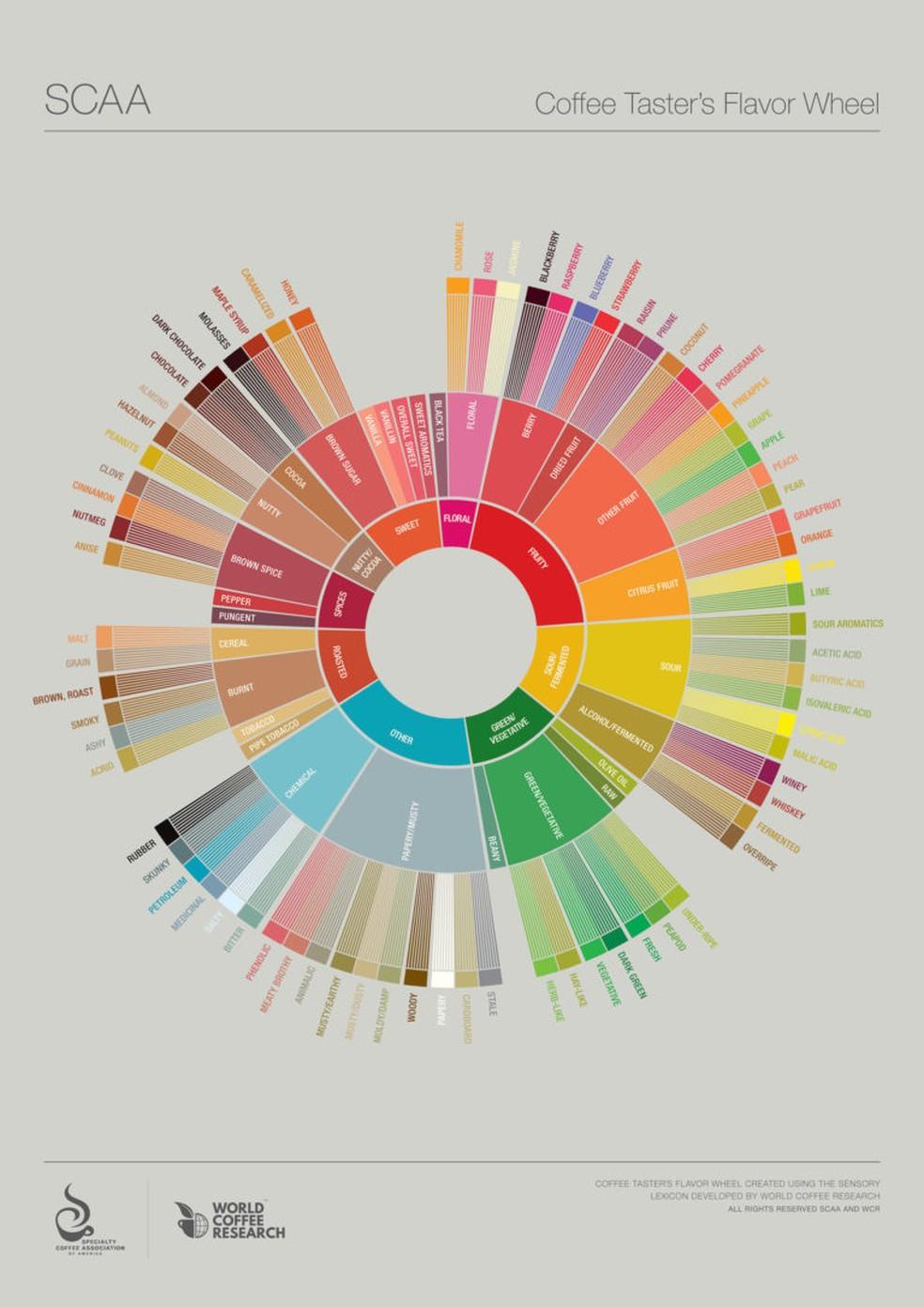 A roda de sabores é utilizada por provadores para identificar os variados aromas e sabores do café  (Foto: Divulgação / Speciality Coffee Association)