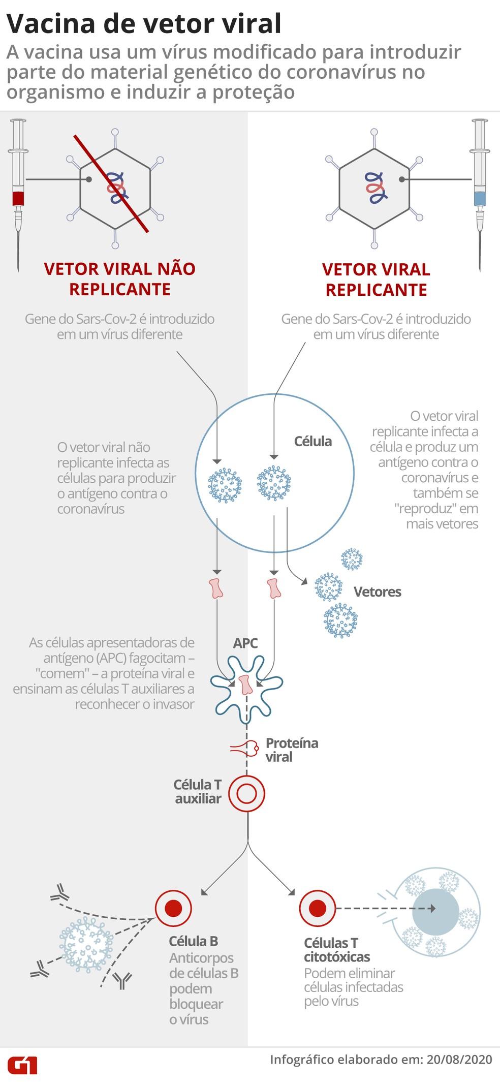 Infográfico mostra como funciona uma vacina de vetor viral — Foto: Arte G1