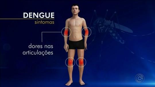 Bernardino de Campos confirma 53 casos de dengue neste ano