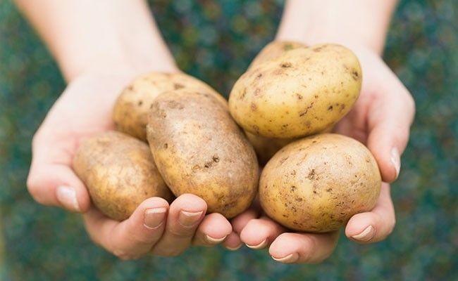 A batata pode resolver uma crise de birra? No caso desse pai, deu certo (Foto: Thinkstock)