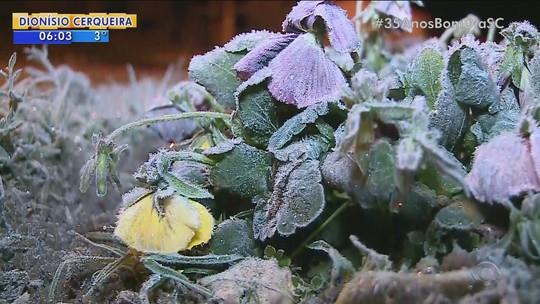 Com -8,8ºC, cidade de SC volta a ter o dia mais frio de 2017