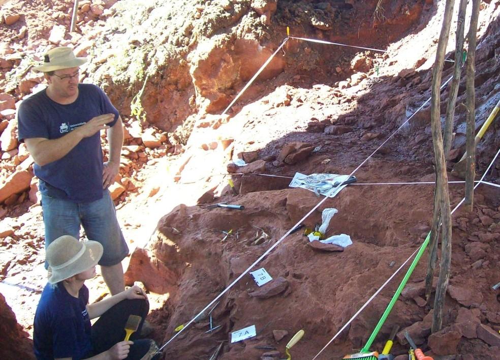 Pesquisadores fizeram escavação em busca de pteurossauro — Foto: Universidade do Contestado/Divulgação