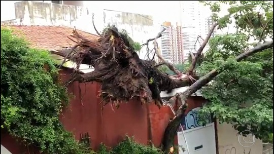 Temporal provoca destruição em São Paulo