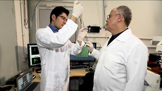 Pesquisa usa planta encontrada no Nordeste para combate ao HIV