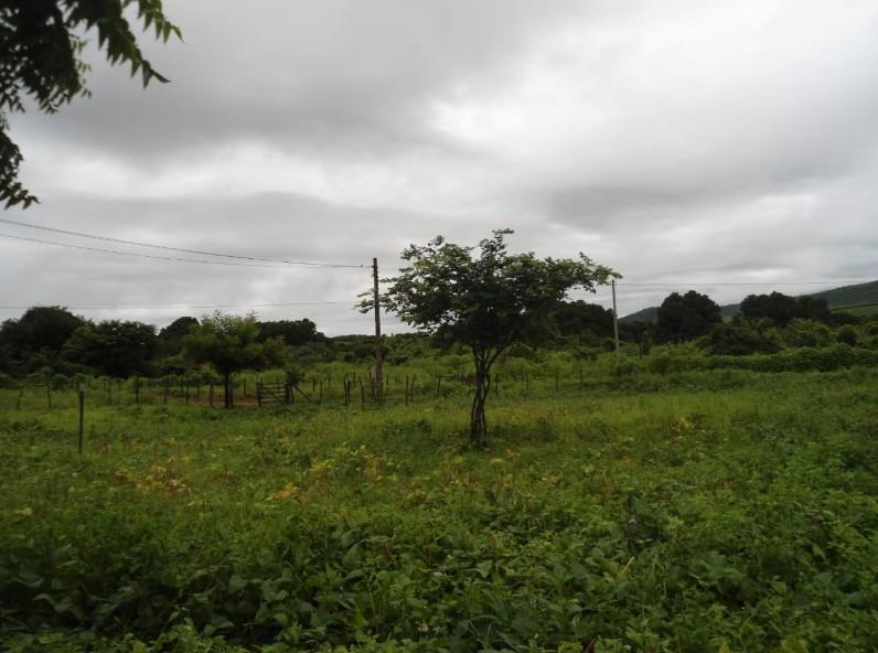 Último fim de semana de abril deve ser de chuvas em todas as regiões do Ceará, diz previsão da Funceme