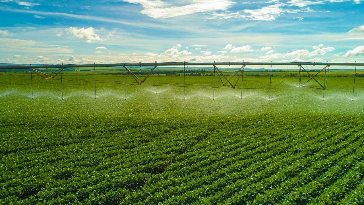 Algar Farming é o braço do agronegócio do grupo Algar