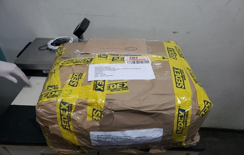 PF desarticulou quadrilha que enviava drogas em pacotes de café pelos Correios em Rondônia.  — Foto: Divulgação/Polícia Federal