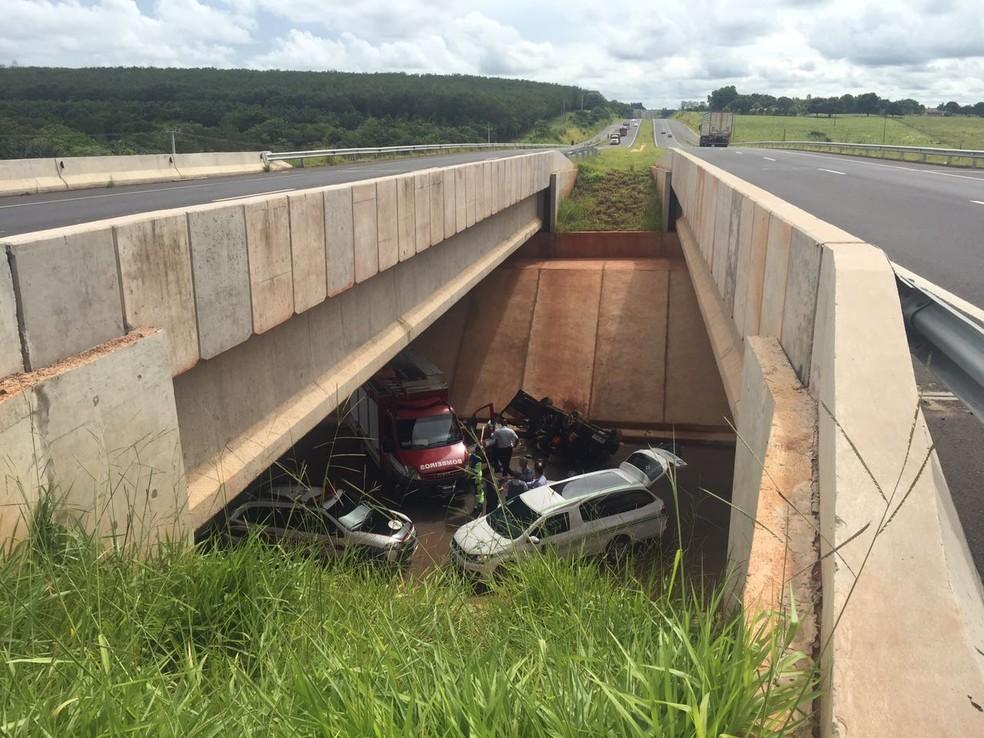 Carro despencou do viaduto na SP-425, em Indiana (Foto: Murilo Zara/TV Fronteira)