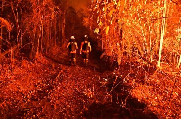 O treinamento de bombeiros para o combate dos incêndios florestais tem sido medida evidenciada em Mato Grosso do Sul — Foto: GOVMS/Reprodução