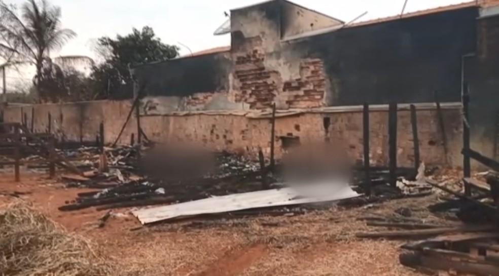 Cavalos morreram após incêndio em cocheira de Mogi Guaçu — Foto: Reprodução/EPTV