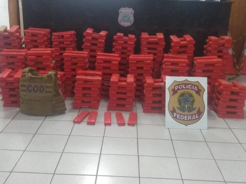 Motorista é preso pela PF com quase meia tonelada de maconha em porta-malas de carro em MT — Foto: Polícia Federal de Mato Grosso