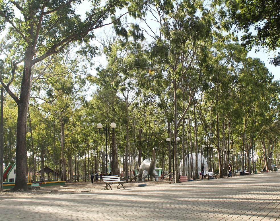 Parque Euclides Dourado, conhecido como Parque dos Eucaliptos, em Garanhuns (PE) — Foto: Camila Queiroz/Divulgação