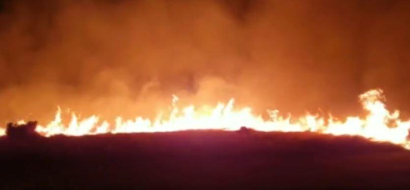 Incêndio no Parque Pinheirinho em Araraquara atinge área igual a 11 campos de futebol