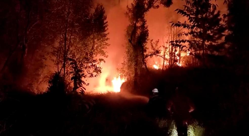 Incêndio atinge área de vegetação próxima a casas em Mairinque — Foto: Prefeitura de Mairinque/Divulgação