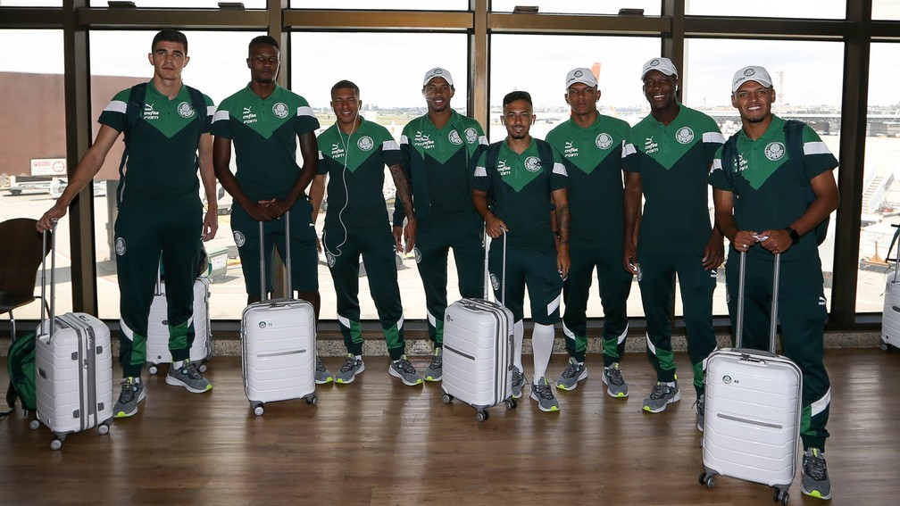 Vinicius, Pedrão, Esteves, Wesley, Alan, Veron, Patrick de Paula e Gabriel Menino, do Palmeiras — Foto: Cesar Greco / Ag. Palmeiras