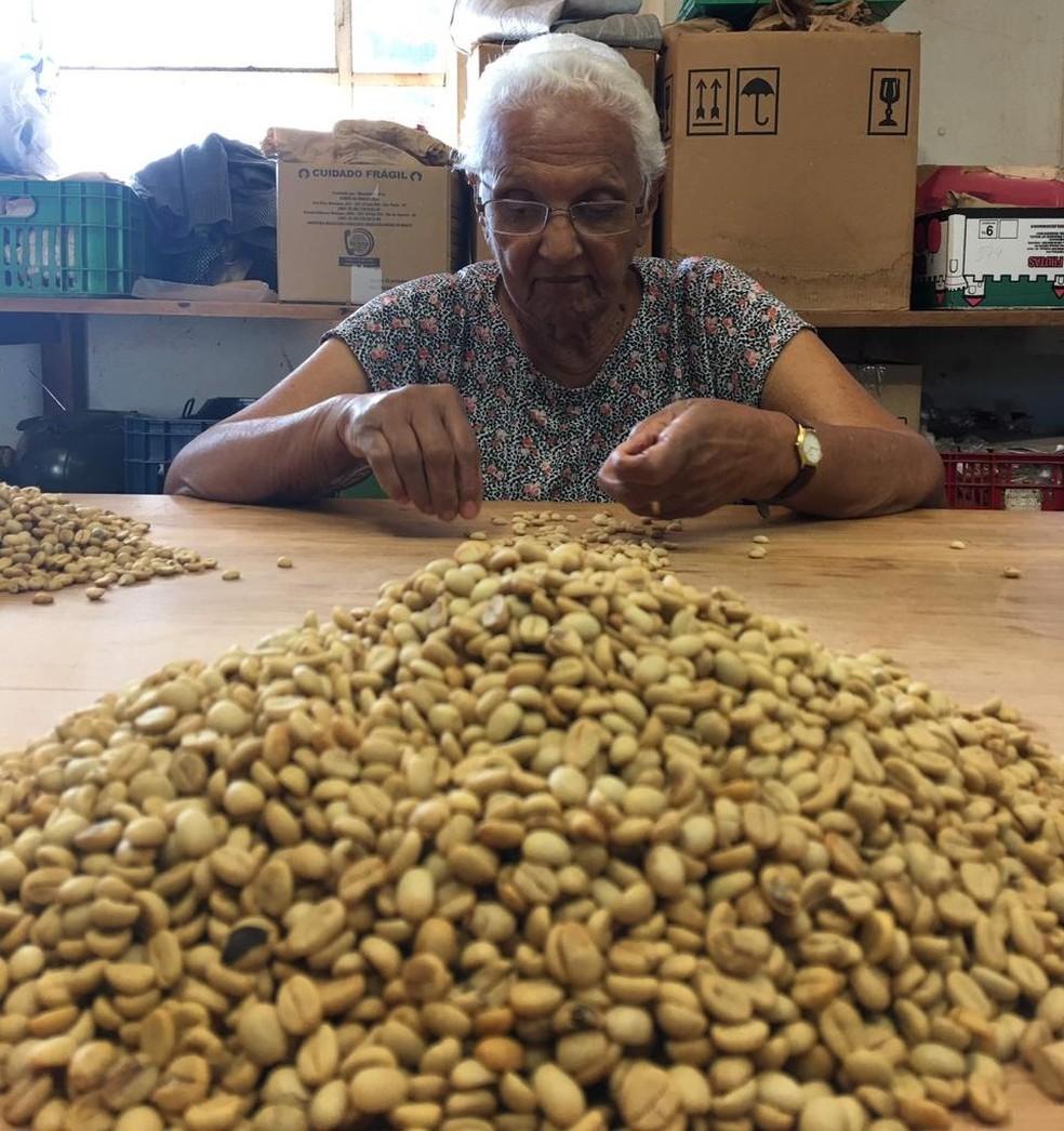 Dona Ivone mexendo em grãos de café no Instituto Agronômico de Campinas (IAC). — Foto: Sergio Parreiras Pereira