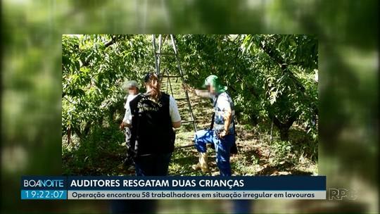 Auditores resgatam 15 adolescentes e uma criança que trabalhavam em fazendas, no Paraná